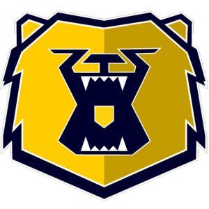 Sheffield Bruins